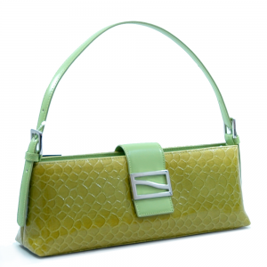 latest purse pic