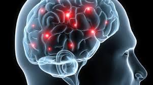 healthy brain test things