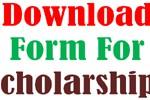 Punjab Educational Endowment Fund PEEF Scholarships Form Download Undergrad Students 2014-15