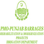 Irrigation Department Punjab Professionals Jobs
