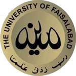 IT Manager Jobs The University Of Faisalabad